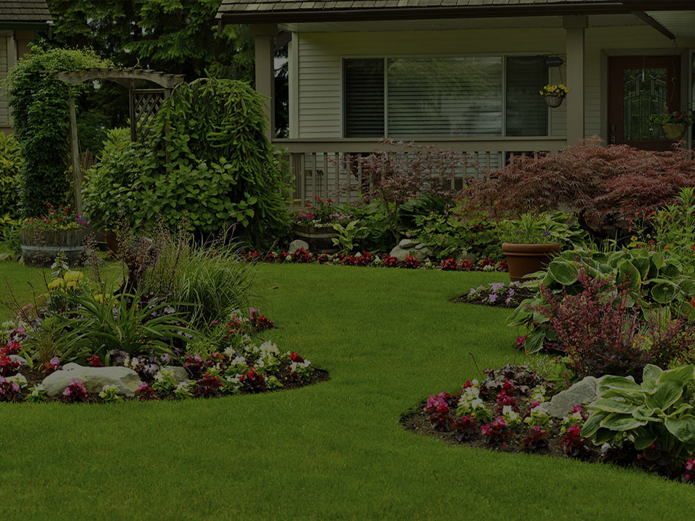 Westfield Landscape Design