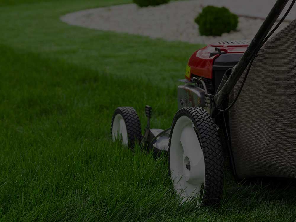 Westfield Lawn Mowing