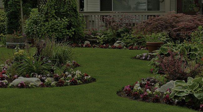 Scotch Plains Landscape Design