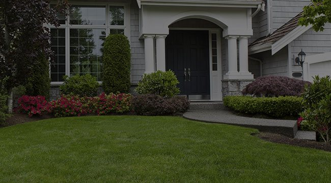 Scotch Plains Landscaping