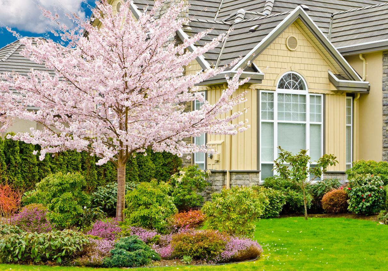 AP Mazzilli Landscape Contractors LLC Landscaping and Lawn Care slide 3