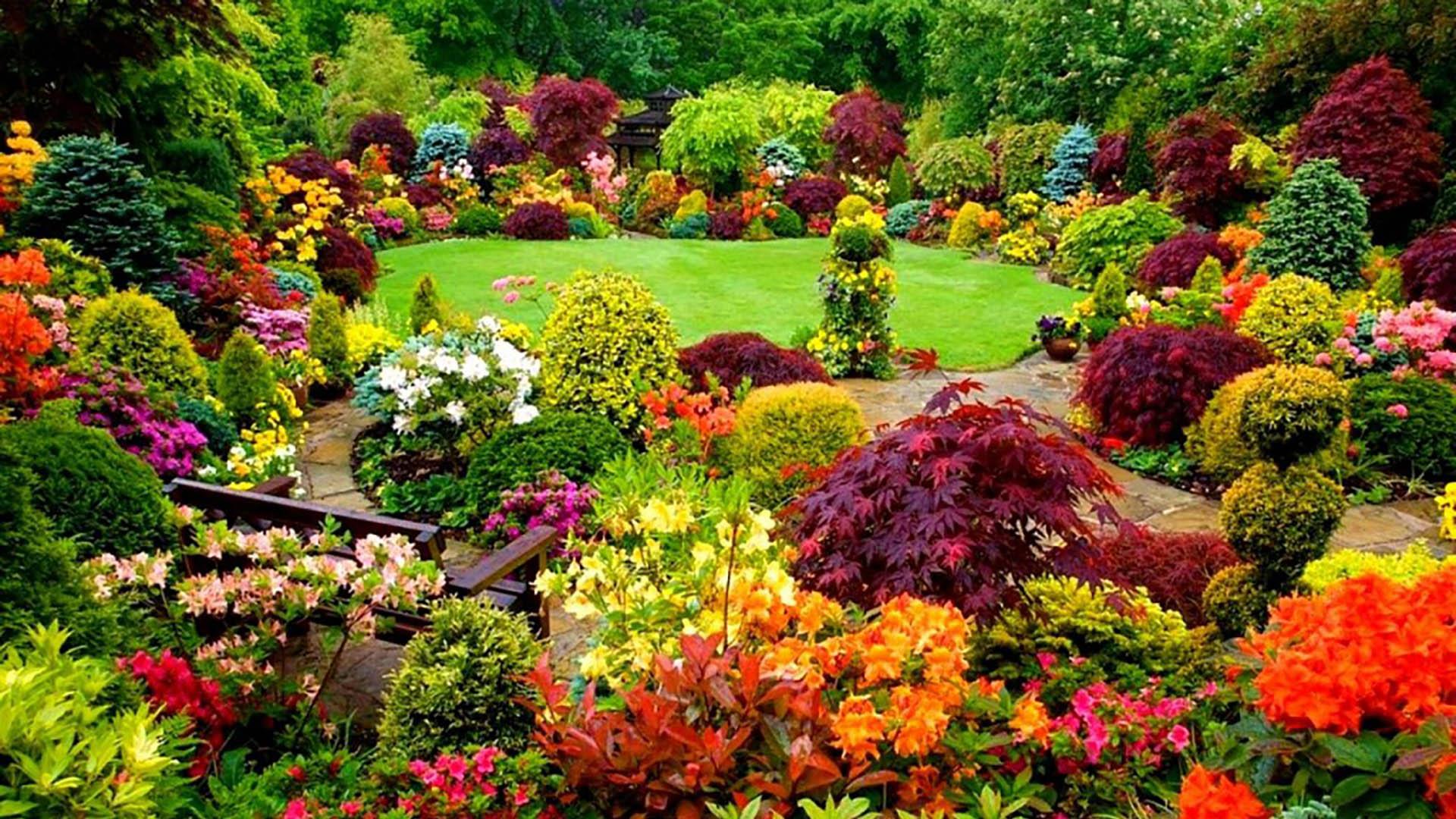 AP Mazzilli Landscape Contractors LLC Landscaping and Lawn Care slide 1